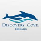 Discovery Cove Day Resort SEM NADO com Golfinho + SeaWorld Orlando + Aquatica Orlando
